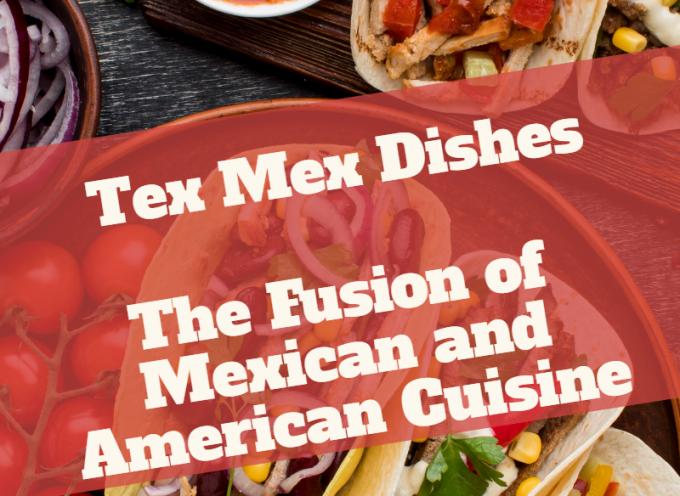 Tex Mex Food Fusion